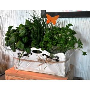 Skrzyneczka na zioła