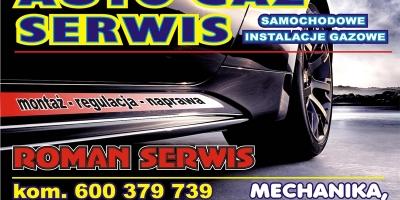 ROMAN SERWIS-3